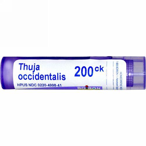 Boiron, Single Remedies, Thuja Occidentalis(ツジャ オシデンタリス)、200CK、約80ペレット