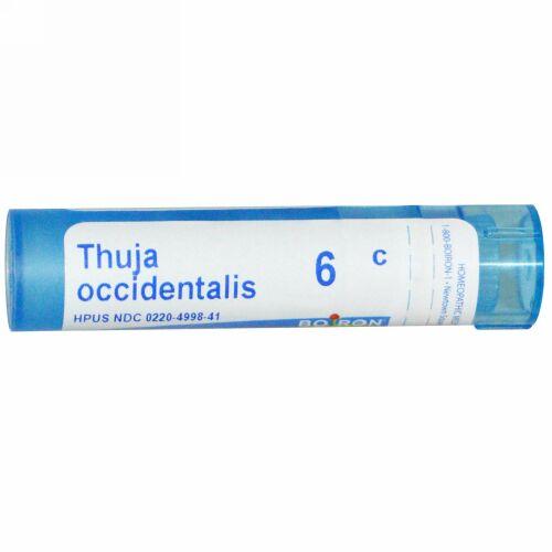 Boiron, Single Remedies, Thuja Occidentalis、6C、80 粒 (Discontinued Item)