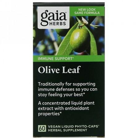 Gaia Herbs, オリーブリーフ、カプセル60粒(ビーガン対応液体フィトカプセル)