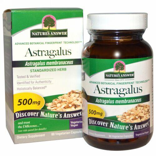 Nature's Answer, アストラガルス、 500 mg、 60植物性カプセル (Discontinued Item)