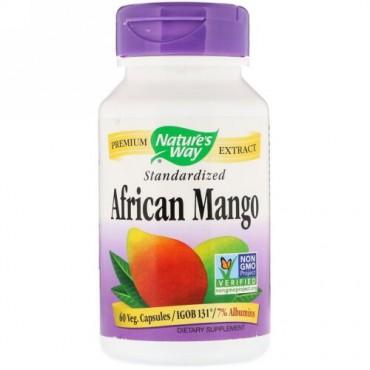 Nature's Way, アフリカン・マンゴー、標準化、Vキャップ60錠 (Discontinued Item)