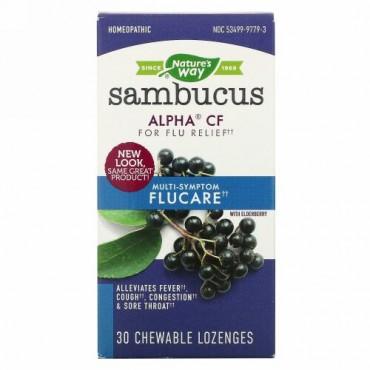 Nature's Way, サンブーカス(ニワトコ)フルーケア、インフルエンザによる複合的な症状に、エルダーベリー・ドロップ、チュワブルドロップ30錠