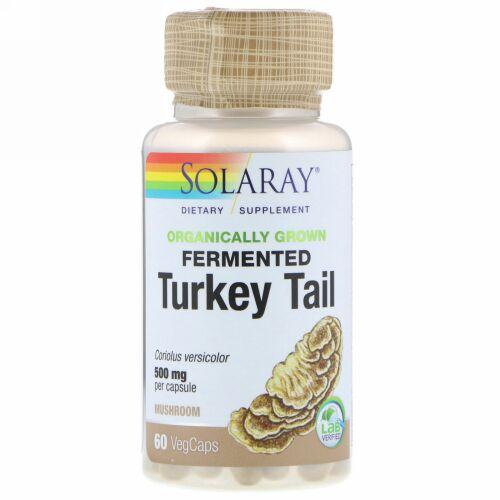Solaray, Organically Grown Fermented Turkey Tail, 60 VegCaps (Discontinued Item)